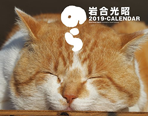 2019猫カレンダー のら