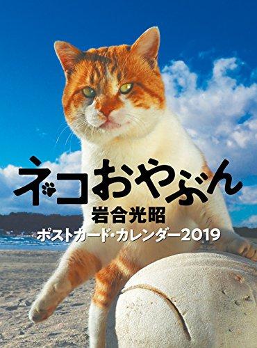 2019ポストカードカレンダー ネコおやぶん