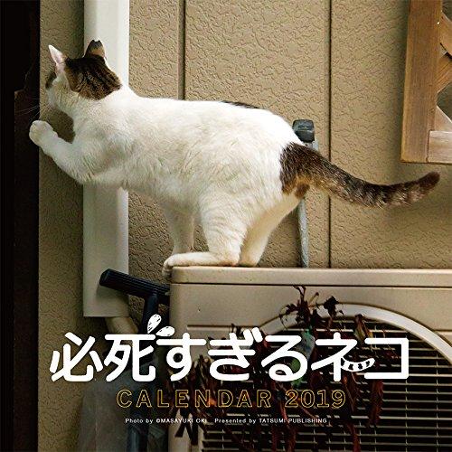 2019必死すぎるネコ カレンダー