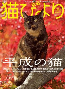 猫びより2018年11月号