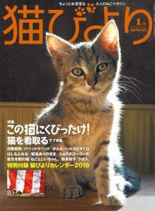 猫びより2019年1月号