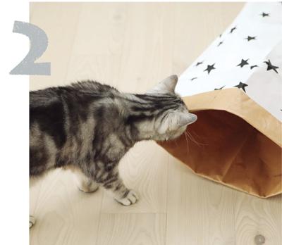 「猫がよろこぶ暮らしのアイディア」おしゃれな柄の米袋をおもちゃに