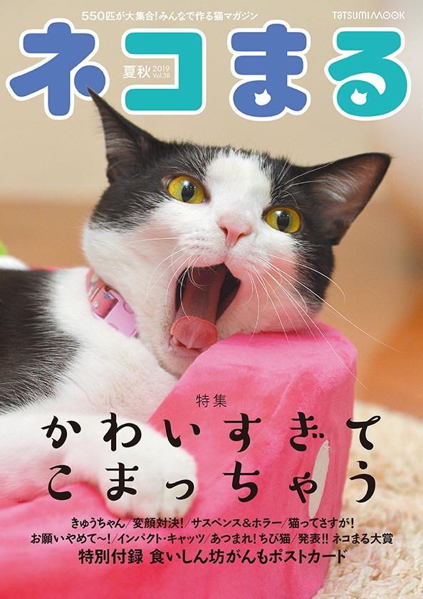 ネコまる Vol.38