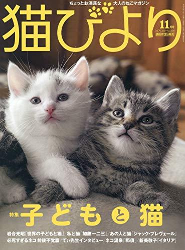 猫びより2019年11月号