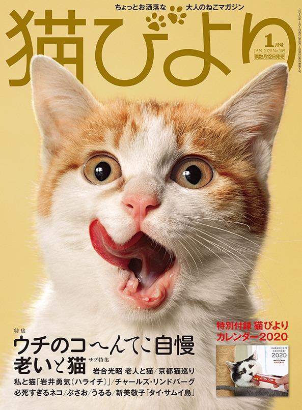 猫びより2020年1月号
