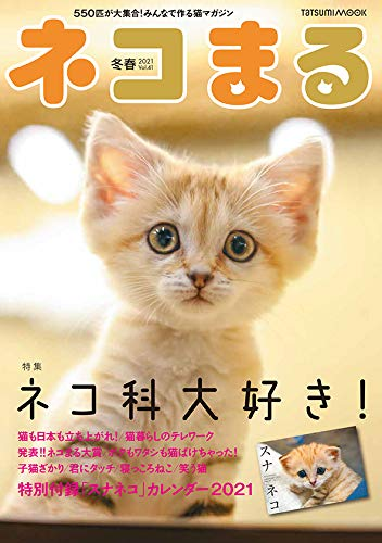 ネコまる Vol.41
