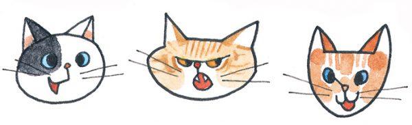 猫の気持ち・鳴き声