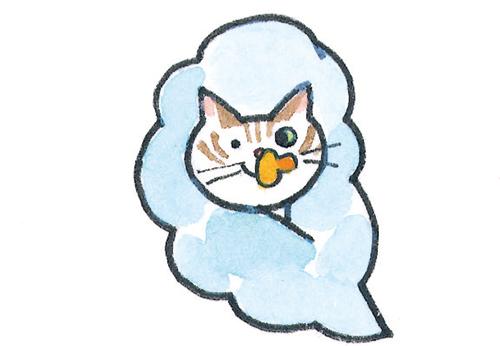 猫の成長・授乳期
